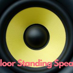 Best Floor Standing Speakers Under Rs 2000
